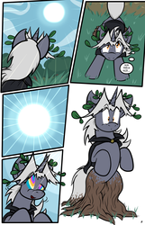 Nature Walk, page 6