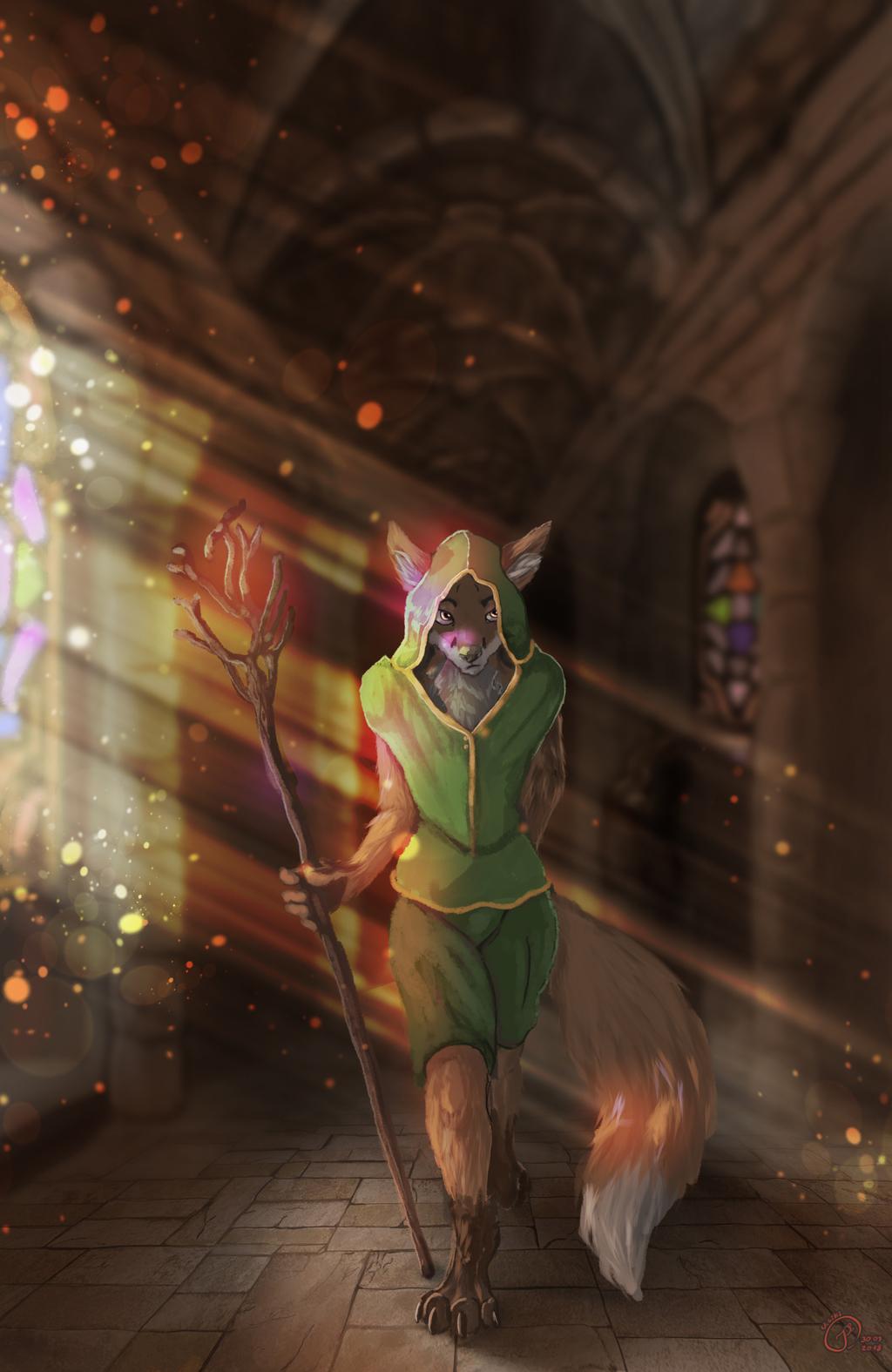 Dreamed fox wizard