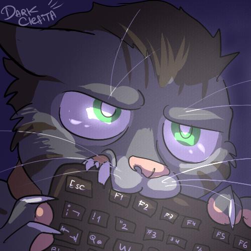 041 Gato Gris