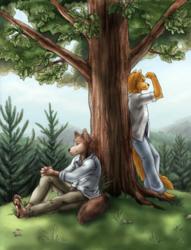 [COM] Under A Tree