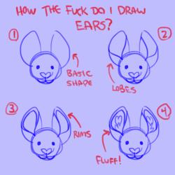ears tutorial