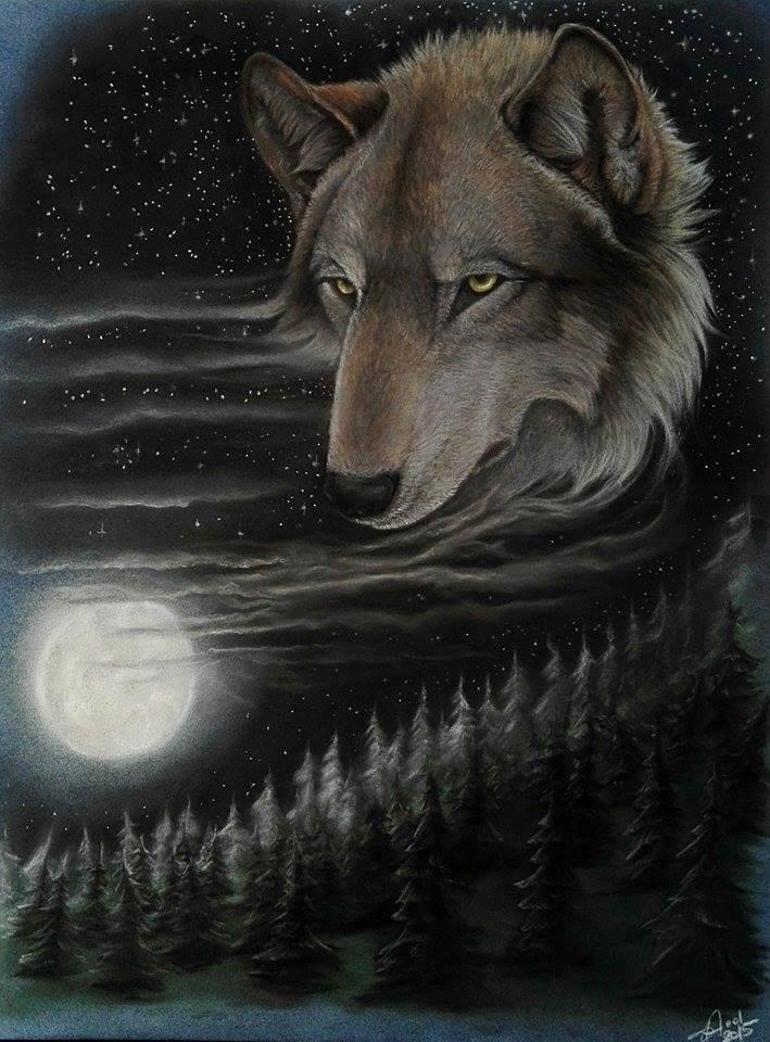 Most recent image: wolfmoon