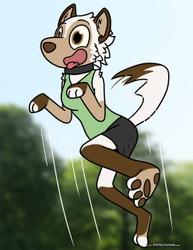 Bark! by Rebecca Raptor