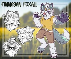 Finnegan Character Sheet