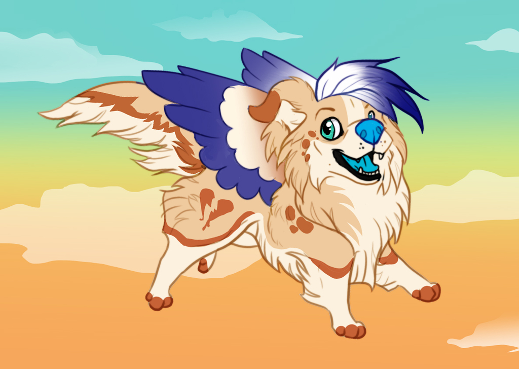 Most recent image: Sky Frolic!