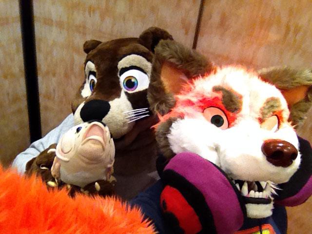 Most recent image: Elevator Selfie