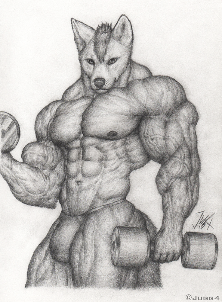 Dingo Workout