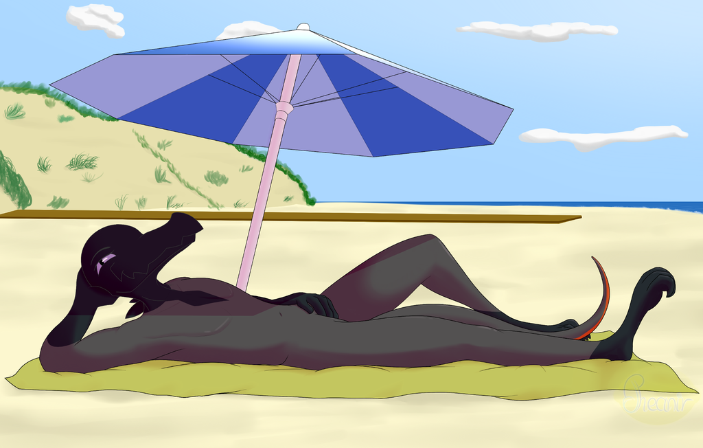 GIFT: Louis at the beach