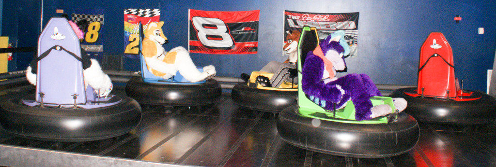 New Years Even Party 2011 -  Furries in Bumper Cars