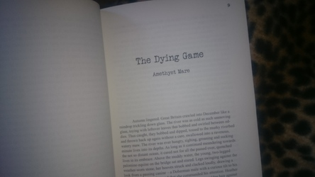Typewriter Emergencies - The Dying Game