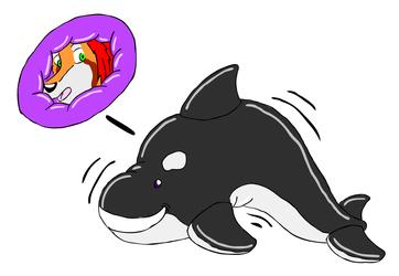 orca toy suit