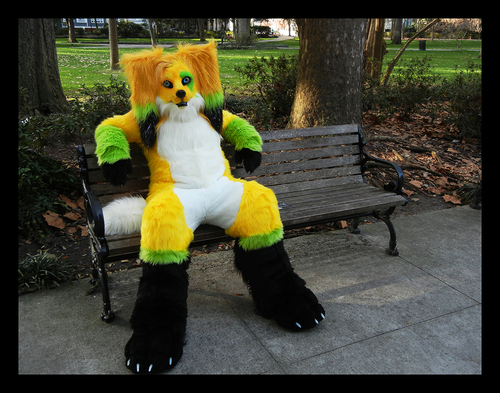 Riddle Full suit!