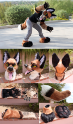 Canine Partial