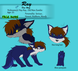 Ray Reference