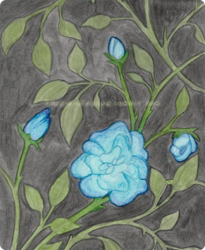 [ Traditional ] Some Flowers