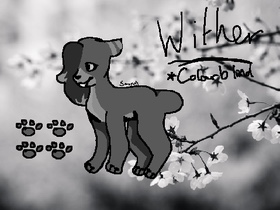 Most recent image: Wither Reference Sheet