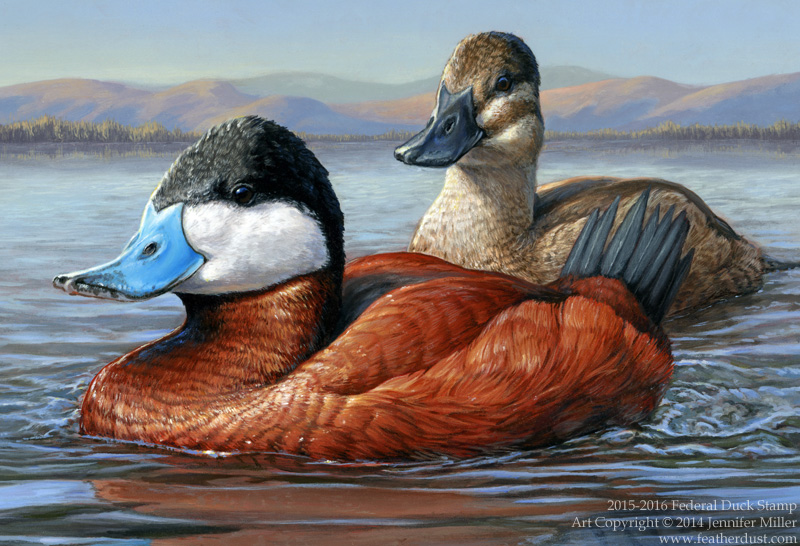 2015-2016 Federal Duck Stamp