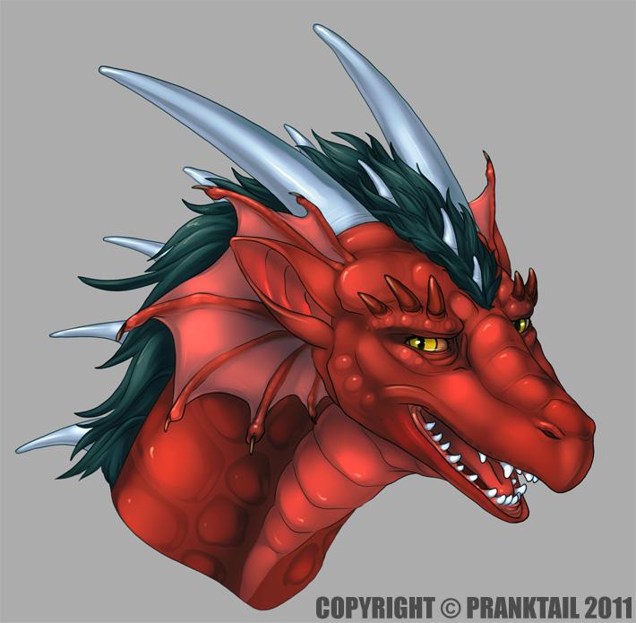 Draco headshot