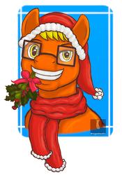 Gift: MRTFSTONE Christmas Pony