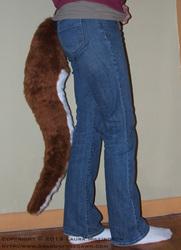 Red Kangaroo Tail