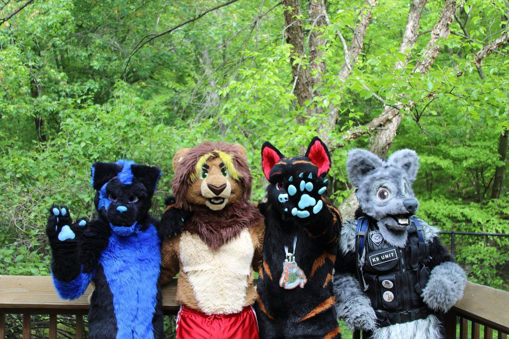 Most recent image: Some Iowa Furs!