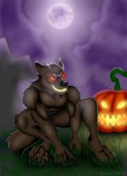Wolf under a full Moon