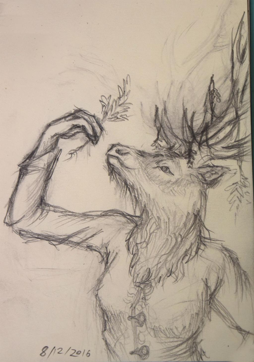 Elk Herbalist