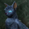 Avatar for Nurit