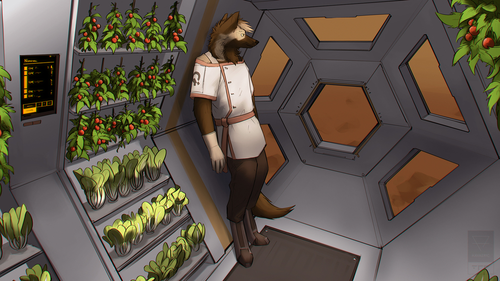 [COM] Martian tomato