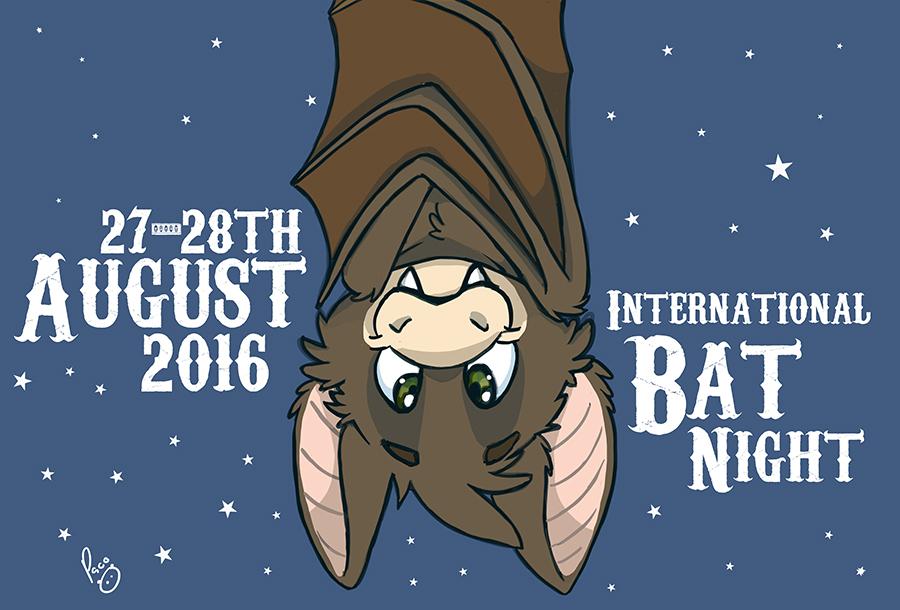 International bat night