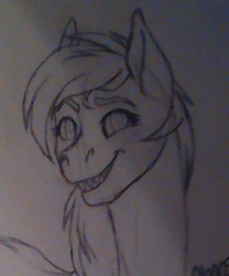 Toothy Grin