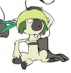 fake leem pokemon and real leem pokemon