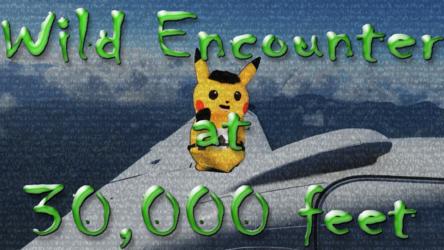 Mascot Pikachu Fursuiting: Wild Encounter at 30,000 Feet