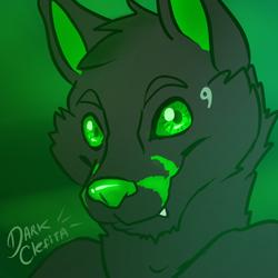 017 Toboe wolf