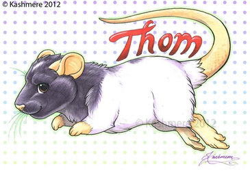 R.I.P Thom!