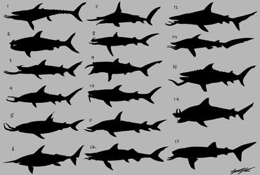 Tusked Shark Silhouette