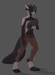 [Commission] Laryana