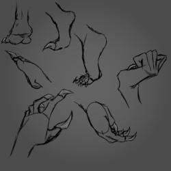 Hand + Feet Practice