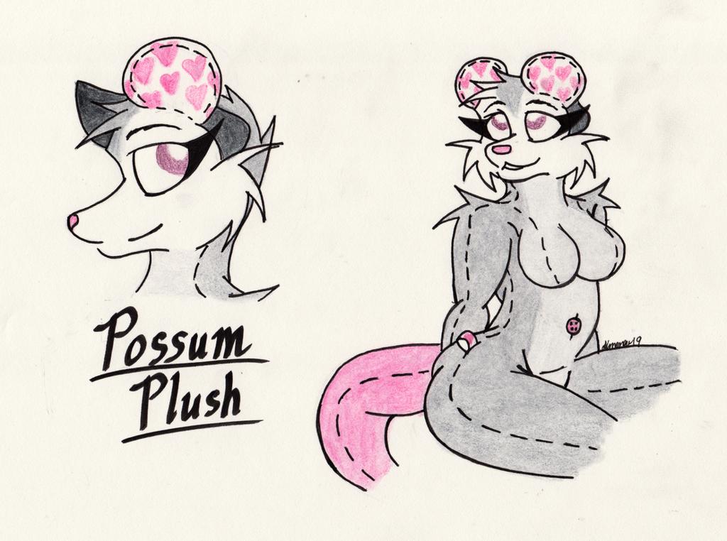 Most recent image: Possum Plush