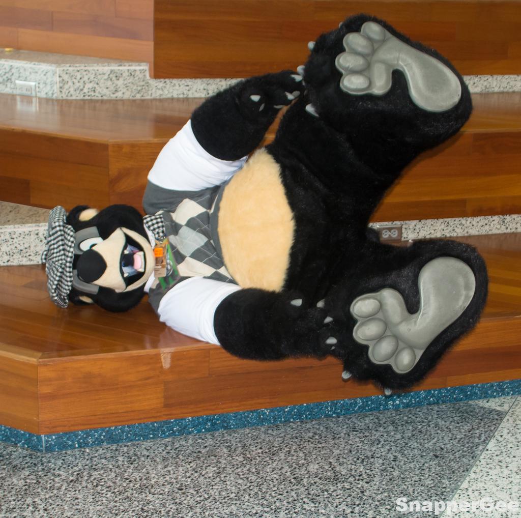Do a Bear Roll!