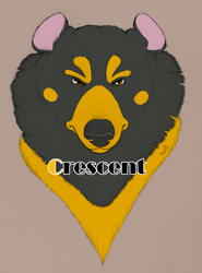 Crescent BLFC Badge