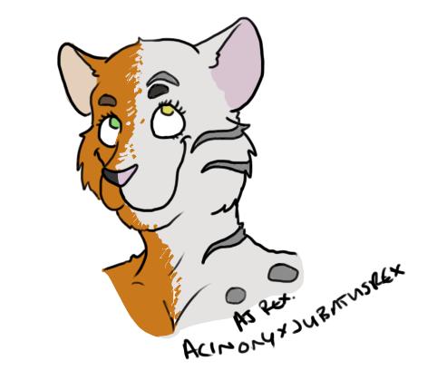 sketchcat
