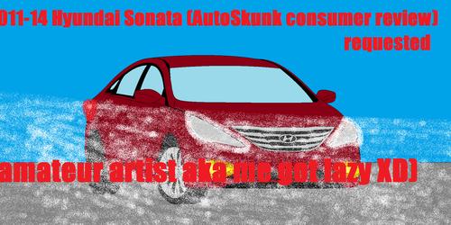 2011-14 Hyundai Sonata (AutoSkunk consumer review)