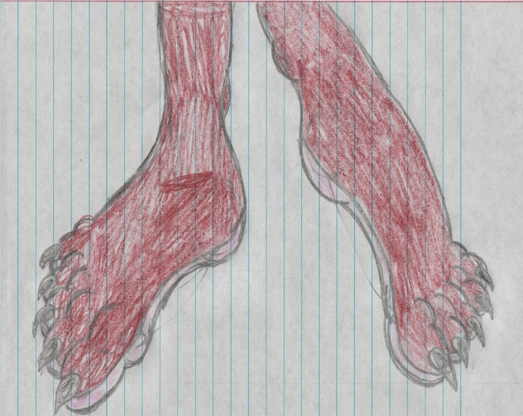 Stephanie the Strawberry Skunk Footshot
