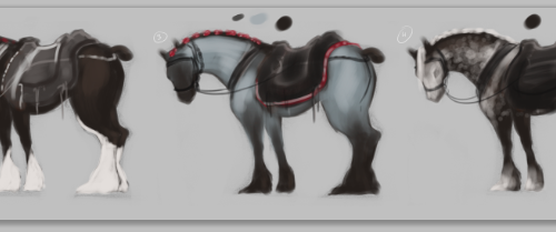 """Red Lady"" Percheron Thumbnailing"