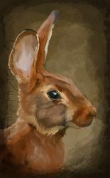 Belgian Hare Speedpaint
