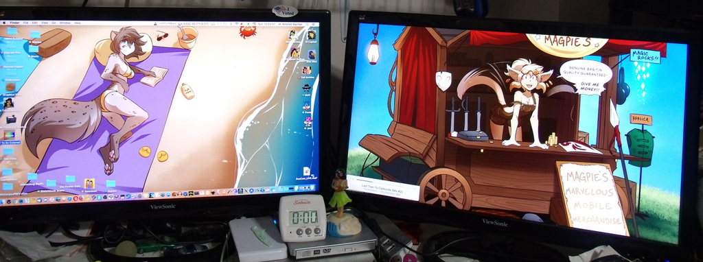 Most recent image: Why I Like Twin Monitors (Part 145)