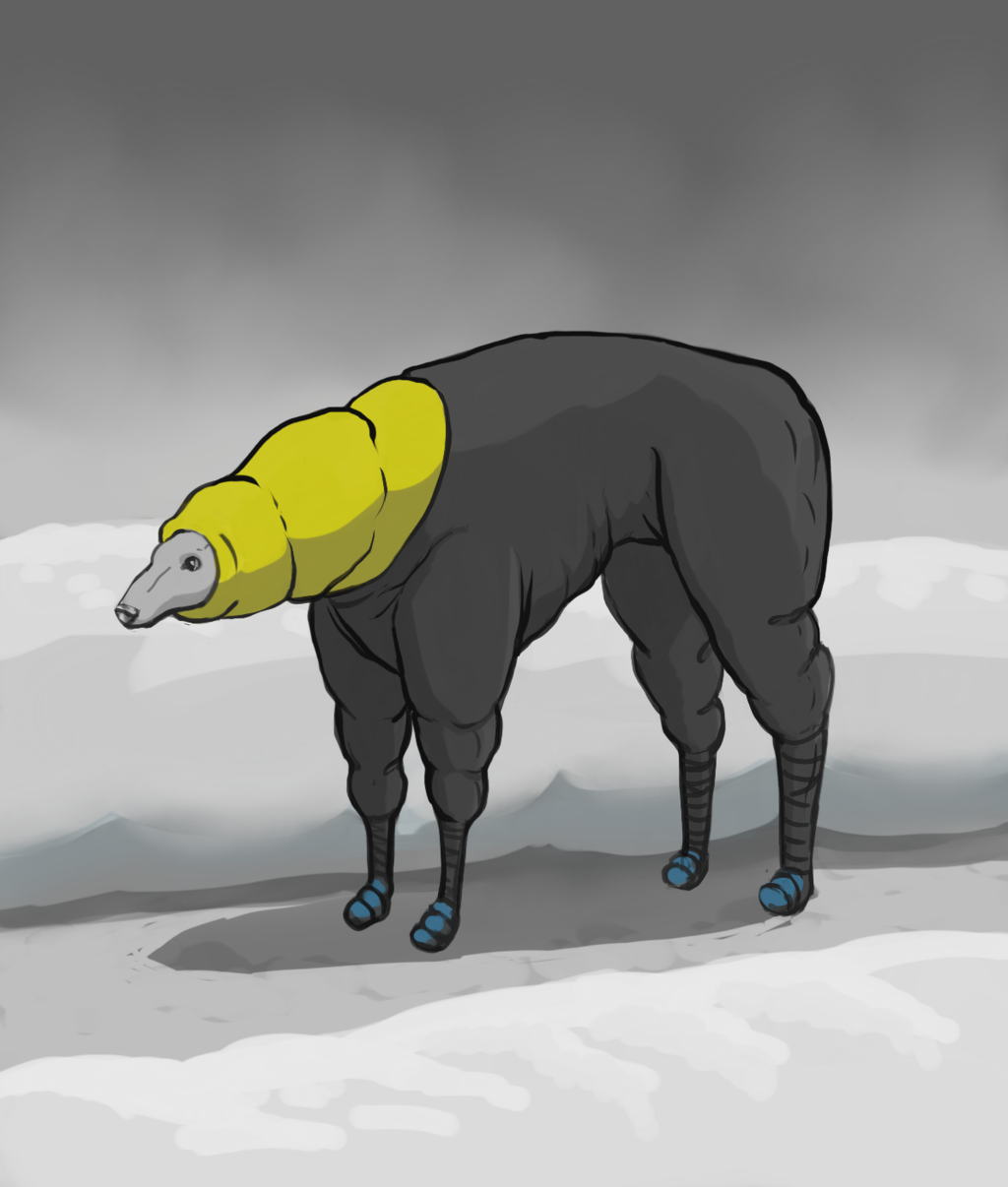 Most recent image: snow-dog