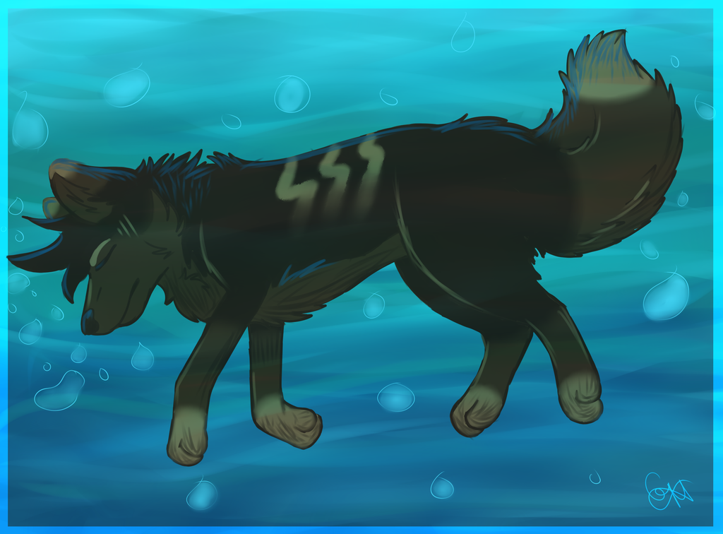 Most recent image: :P22: Drowning
