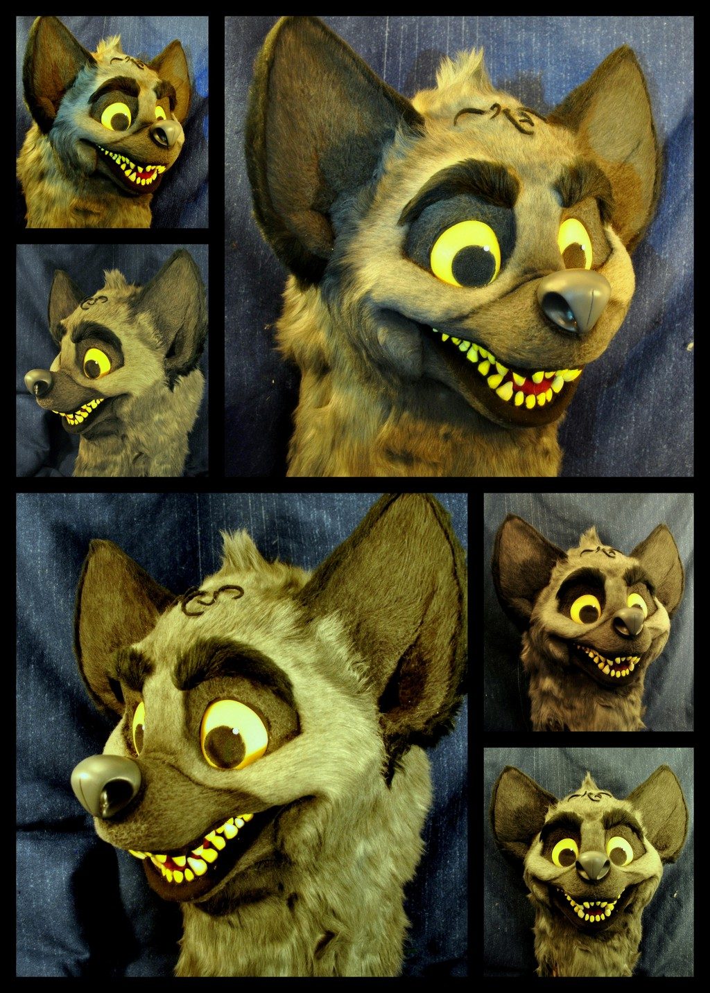 Most recent image: Hyena